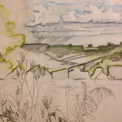View from Snilesworth North York Moors. Kim Tillyer sketch