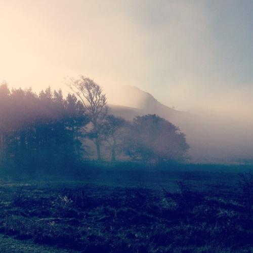 Hawnby Hill, North York Moors. Kim Tillyer