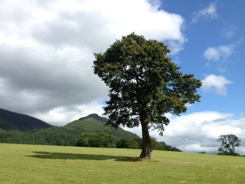 Dodd from the shore of Bassenthwaite