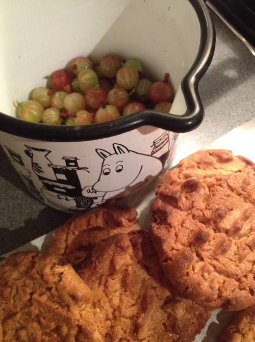 Moomin Pan with gooseberries