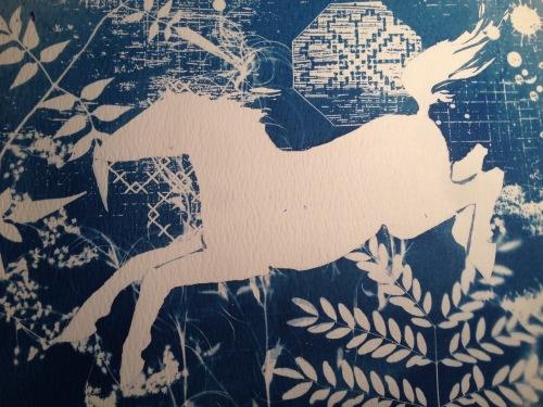 cyanotype horse